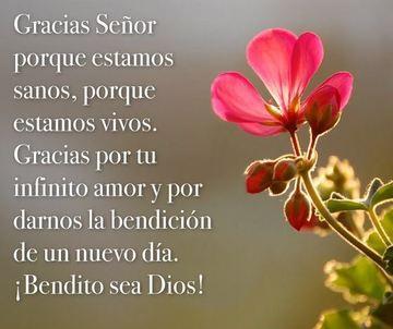postales de agradecimiento a dios por la salud y la vida