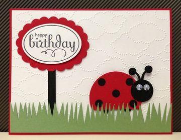 tarjetas de cumpleaños de ladybug divertida