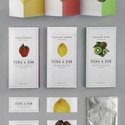como diseñar un folleto para imprimir