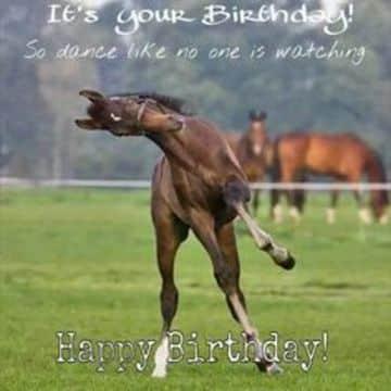 tarjetas de cumpleaños de caballos divertidas