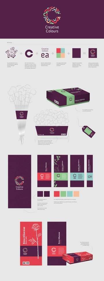 manual de identidad grafica elegante