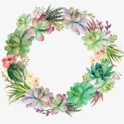 marcos de flores naturales (4)