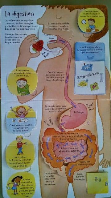 ejemplos de infografia para niños de primaria