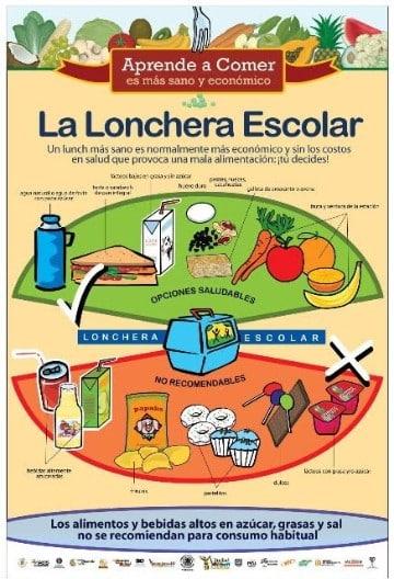 ejemplos de infografia para niños en el colegio