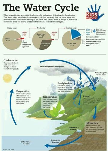 ejemplos de infografia para primaria ciclo del agua