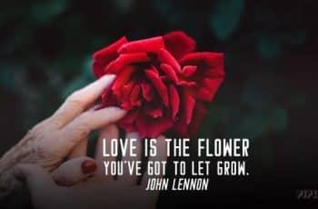 portadas para facebook de amor y pasion
