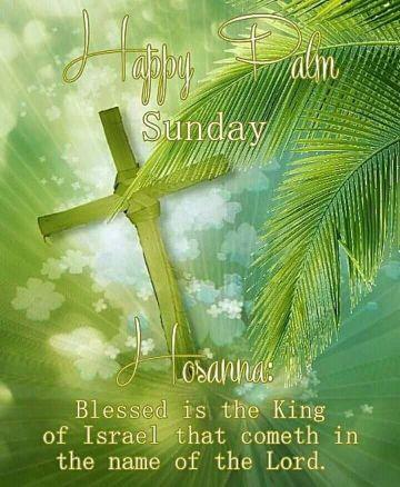 tarjetas domingo de ramos ilustraciones