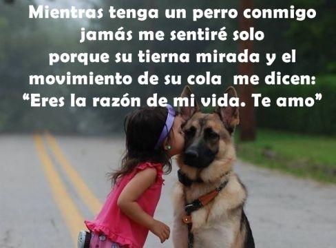 frases bonitas para perritos fotos con niños