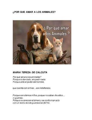frases de animales para reflexionar poema