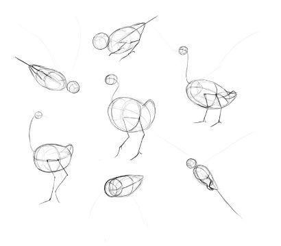 caratulas faciles para dibujar patrones aves