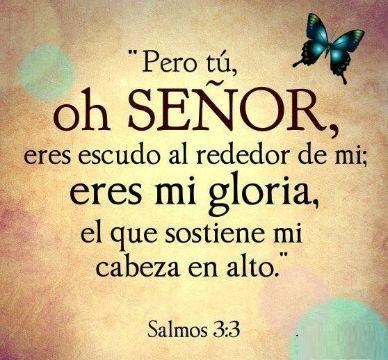 frases de pesame biblicas salmos