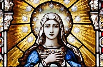 imagenes de la inmaculada concepcion tipo vitral