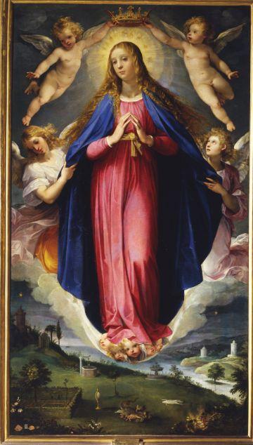 imagenes de inmaculada concepcion en catedral