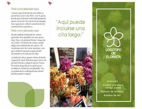 ejemplos de folletos creativos publicidad