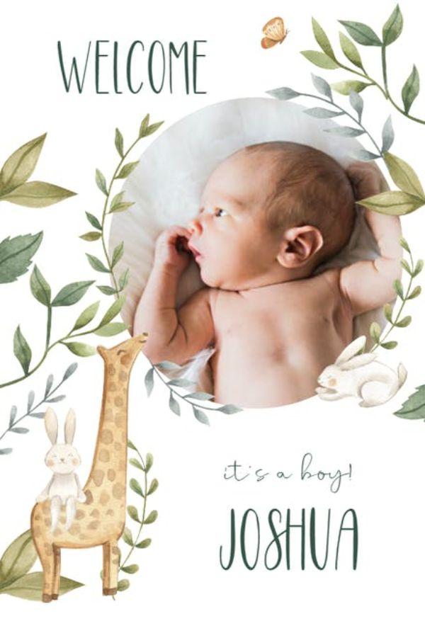 tarjetas para recien nacidos con fotos