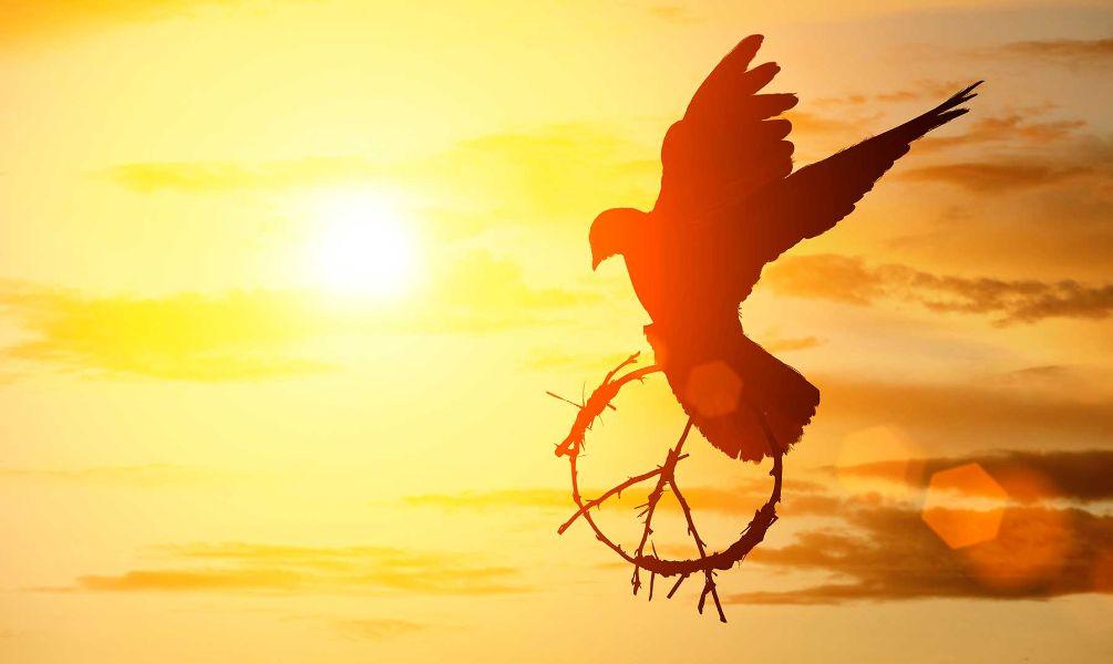 tarjetas de paz y tranquilidad simbolos para editar